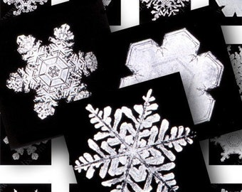 Winter Clipart Snowflake, Real Snowflake Holiday Clipart, .85 inch Square Printable for necklaces, scrabble tile, glass pendant - piddix 608