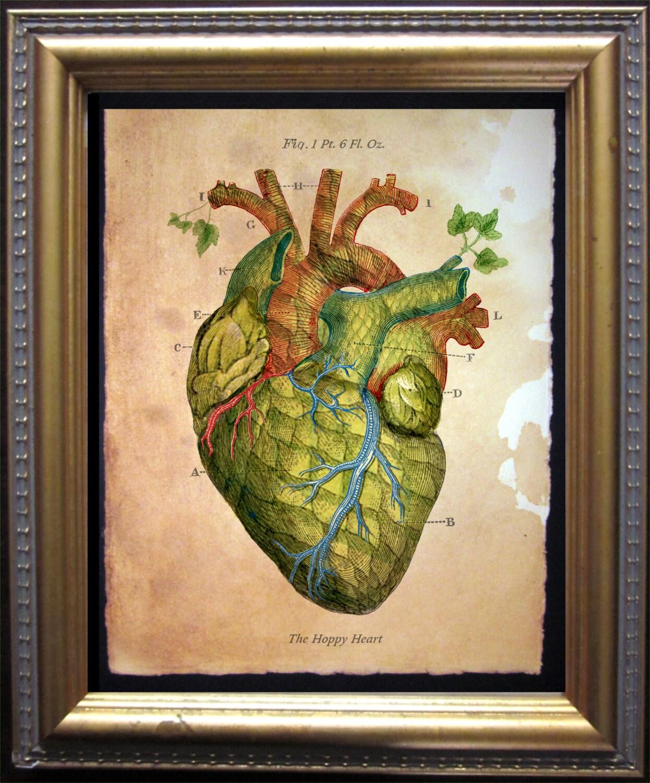 The Hoppy Heart Print Vintage Anatomy Heart Beer Hops Art