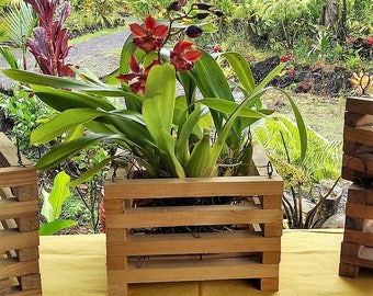 Wood Hanging Baskets,  Wooden Orchid Baskets, Handmade Wood Planters and Hangers, Rustic Hanging Planter Boxes. FREE SHIPPING to USA