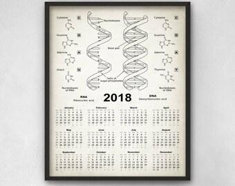 DNA & RNA Calendar 2018 - Biochemistry Poster - 2018 Biology Calendar - Genetics - DNA Double Helix - Science Biochemistry Calendar 2018