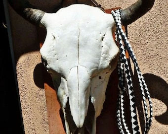 Buffalo Skull on Adobe, Southwest Art , 8 x 10 Matted Photograph, New Mexico Art