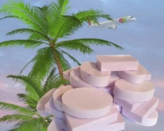 Handmade Travel  Bar Soaps