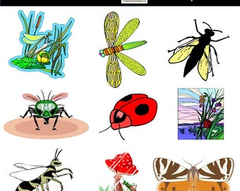 insect clipart etsy rh etsy com bugs clip art free bugs clip art images
