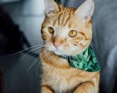 Bandana chat Feuilles de cannabis - à glisser sur un collier pour chat