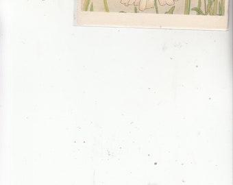 Artist Tribi Fantasy Vintage Postcard Two Ladybugs Dancing On A Daisy Unused