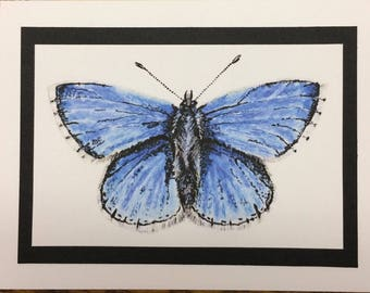 Two Butterfly Notecards