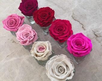 Individual Eternity Rose