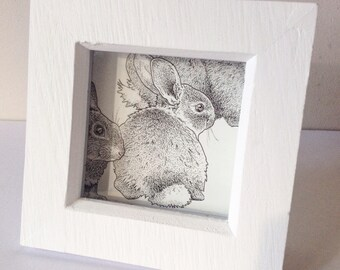 Little bunny, box-framed, limited edition print 'Harbinger of Spring' 2018