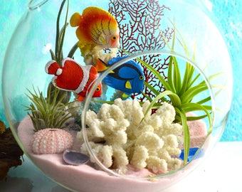 """Bahama Beach Terrarium Kit ~ 8"""" Air Plant Terrarium Kit ~ 3 Fish Swimming ~ Faux Coral ~ Coastal Living Beach House Decor ~ Aquarium ~ Gift"""