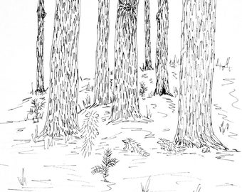 Pinewoods with porcupines. 3 designs