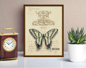 Butterfly prints.antique butterfly print,digital prints,butterfly wall art,set of butterflies,set of prints,print gift set,