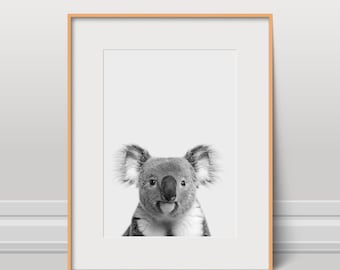 Koala Print, Cute Animal Poster, Black And White, Instant Download, Kids Art, Nursery Wall Art, Animal Photo, Wild Art