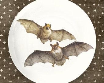 bats II plate