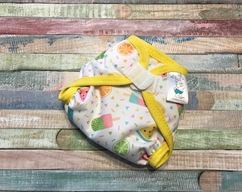 Summer Treats Poly PUL Cloth Diaper Cover With Aplix Hook&Loop Or Snaps You Pick Size XS/Newborn, Small, Medium, Large, or One Size