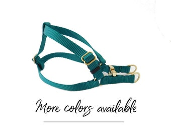 Dog Harness in Teal and Gold, Nylon Webbing Step in Dog Harness, Pet Harness, Metal Buckle and Hardware
