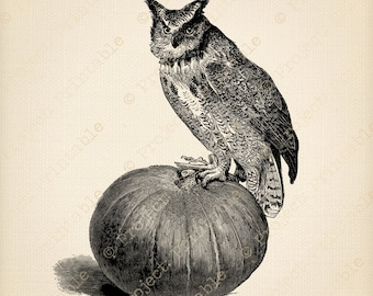 HALLOWEEN Instant download printable - OWL PUMPKIN digital download clip art - iron on transfer - fabric transfer graphics clipart