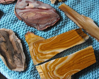 Oregon Petrified Wood And  Jasper Rock Slab Assortment