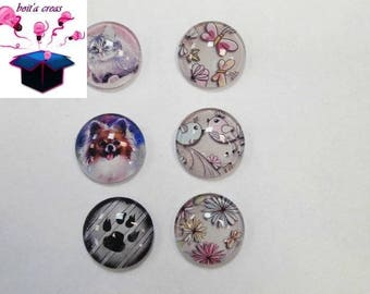 6 glass cabochons 18 mm as pictured lot number 54