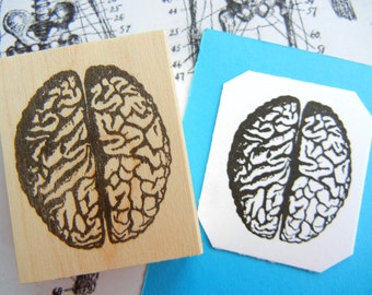 Brain Rubber Stamp // Anatomy Rubber Stamp - Handmade rubber stamp by BlossomStamps