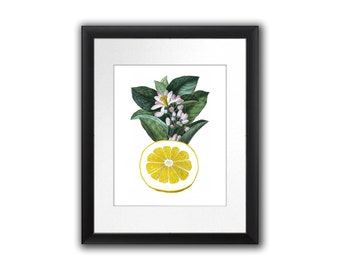 Lemon Antique Botanical Print Citrus Fruit No.11 Wall Art Tropical Decor Wall Hanging Housewarming gift floral print  8x10 Home Decor Art