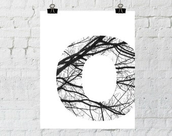 Monogram, Letter O, Black and White Photography, Tree Branch Art, Home Decor, Instant Download, Printable Wall Art, ADOPTION FUNDRAISER