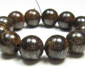 Rustic Beauty - 10mm Bronzite Round Bead - 12 beads - #GS8290