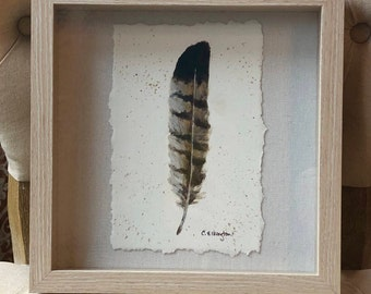 Red-Tailed Hawk Feather, ORIGINAL ART.
