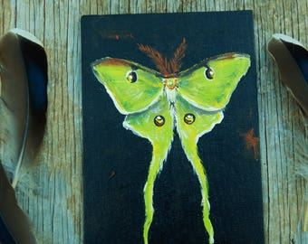 SALE ! Luna Moth original acrylic painting