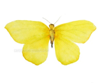 "small yellow butterfly 5"" x 7""archival print of original watercolor"