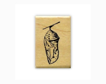 Chrysalis mounted rubber stamp, monarch, summer, nature, Sweet Grass Stamps No.9