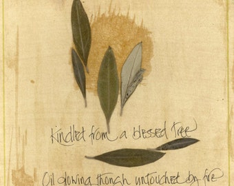 """Blank note card with olive leaves and calligraphy:  """"The Sacred Olive"""""""