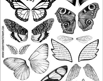 Wings- set of unmounted rubber stamps by Cherry Pie - Plate 07