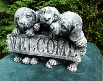 Adorable Welcome Puppies