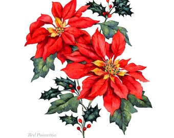 Watercolour Painting RED POINSETTIA Flower Art Print, Original Limited Edition Wall Art Print, Handmade Watercolor Painting, Home Decor