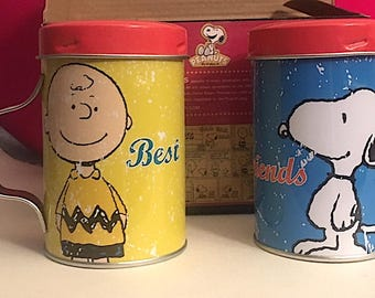 Peanuts Snoopy and Charlie Brown Tin Salt & Pepper Shaker Set