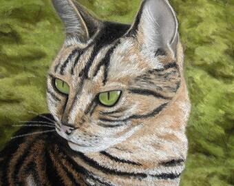 Tabby Cat Portrait in Pastels