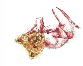 Bear Naked Lady Print