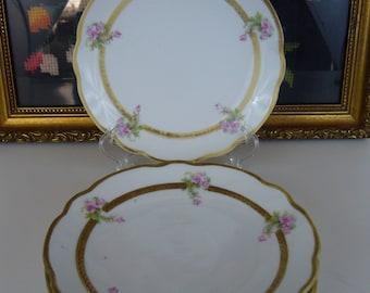 Vintage M Z Austria Set of 4 Berry Plates - Four Handpainted Berry Plates - Moritz Zdekauer Plates