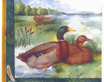 Decoupage Napkins | Wild Ducks at Lake | Duck Napkins | Wildlife Napkins | Bird Napkins | Animal Napkins | Paper Napkins for Decoupage