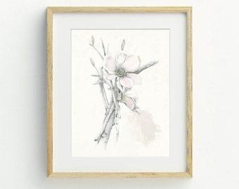 Flower Art Print, Bohemian Decor, Flower Wall Art, Flower Illustration, Dogwood, Archival Print, Botanical Art, Illustration, Hand Drawn
