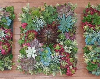 Delightful Lifelike Succulent Wall Panels, Vertical Wall Garden, 3 Individual Framed Succulent  Gardens, Multi