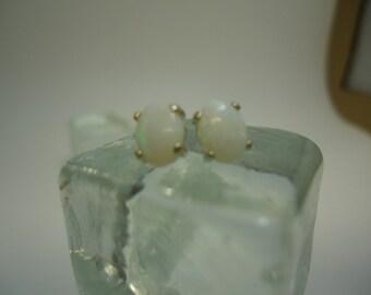 Oval Cabochon Opal Earrings in Sterling Silver  #887