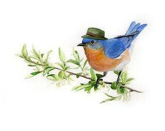 "No.8 - ""Eastern Bluebird with Fedora"" - high-quality 8x10"" giclée fine art print, signed by artist"