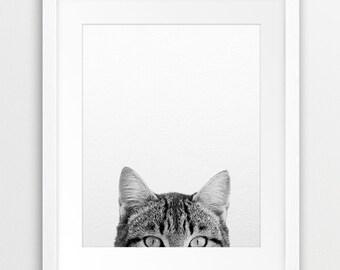 Cat Print, Cat Photo Wall Art, Nursery Black And White, Animal Print, Cat Black And White, Modern Wall Art, Kids Room Decor, Printable Art