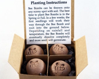 Bee Bombs - wildflower seed balls for pollinators, gift box of 4