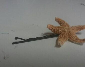 Mermaid Hair Pins-Mini Real Dried Starfish Bobby Pins