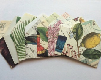 Upcycled Flora and Fauna A2 Envelopes Lined