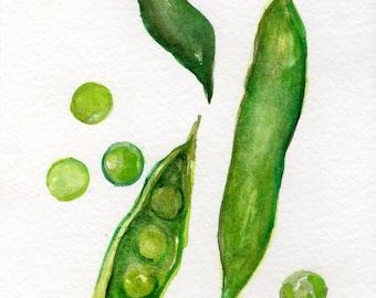 English Peas watercolor painting Original 4 x 6 art, vegetable home decor, kitchen wall art, SharonFosterArt Farmhouse Decor