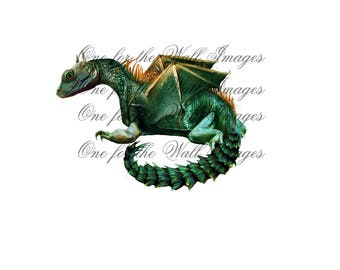 Dragon, Fantasy overlay. 1 Dragon on transparent background png digital file