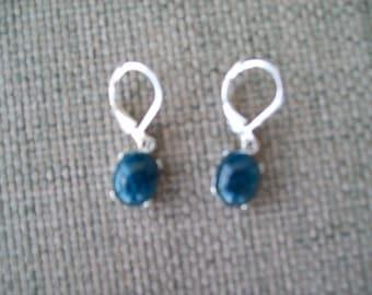Genuine Dark Blue Apatite Earrings in 925 Sterling Silver 10x8mm